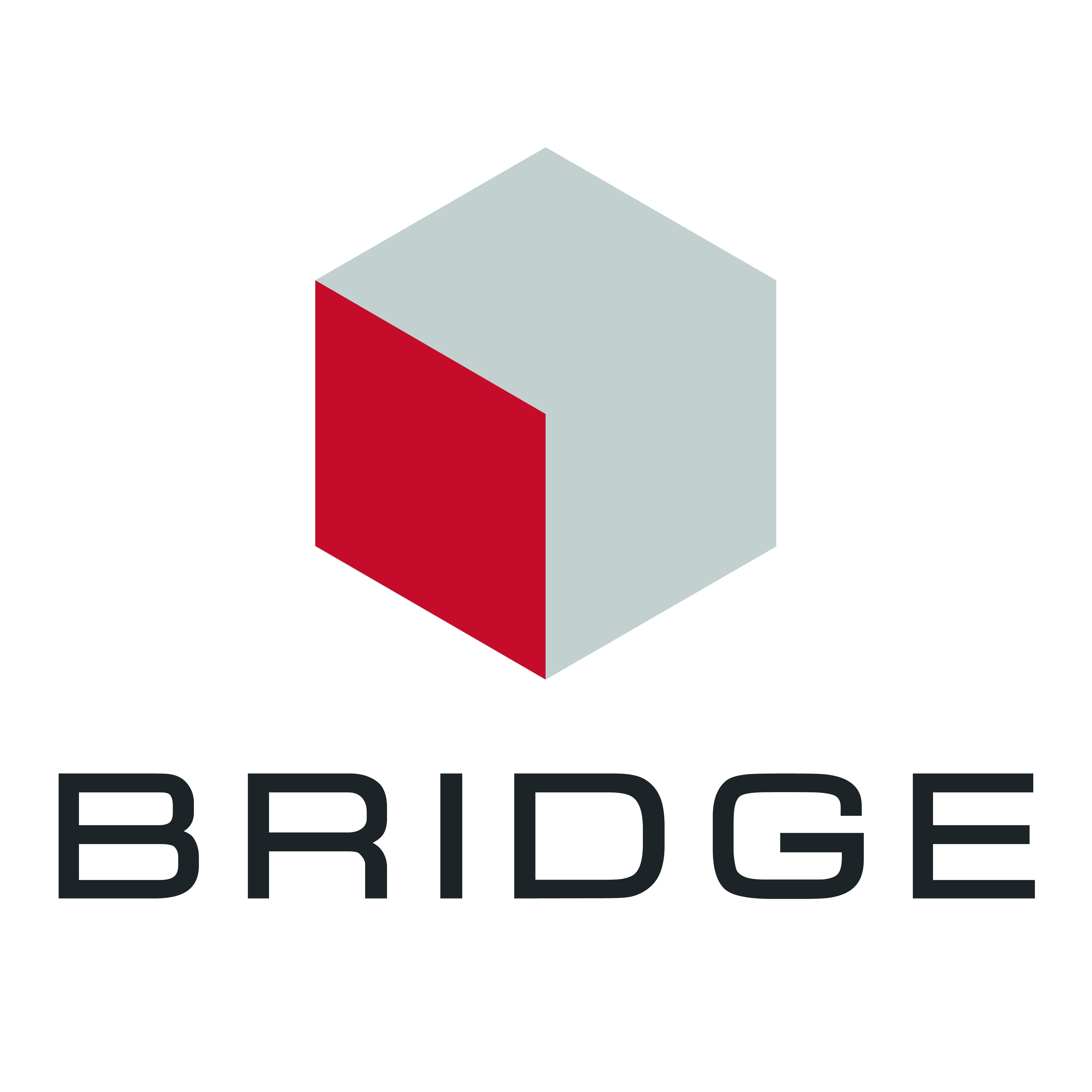bridge nightclub logo